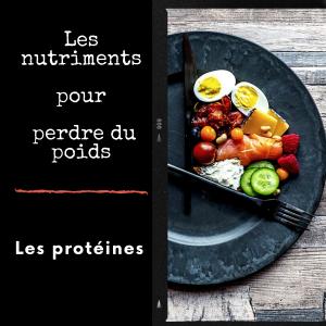 Perte de Poids: les protéines